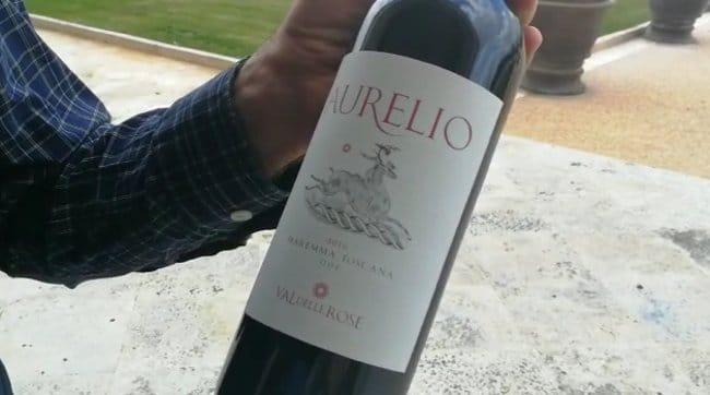 wine making experience tuscany maremma