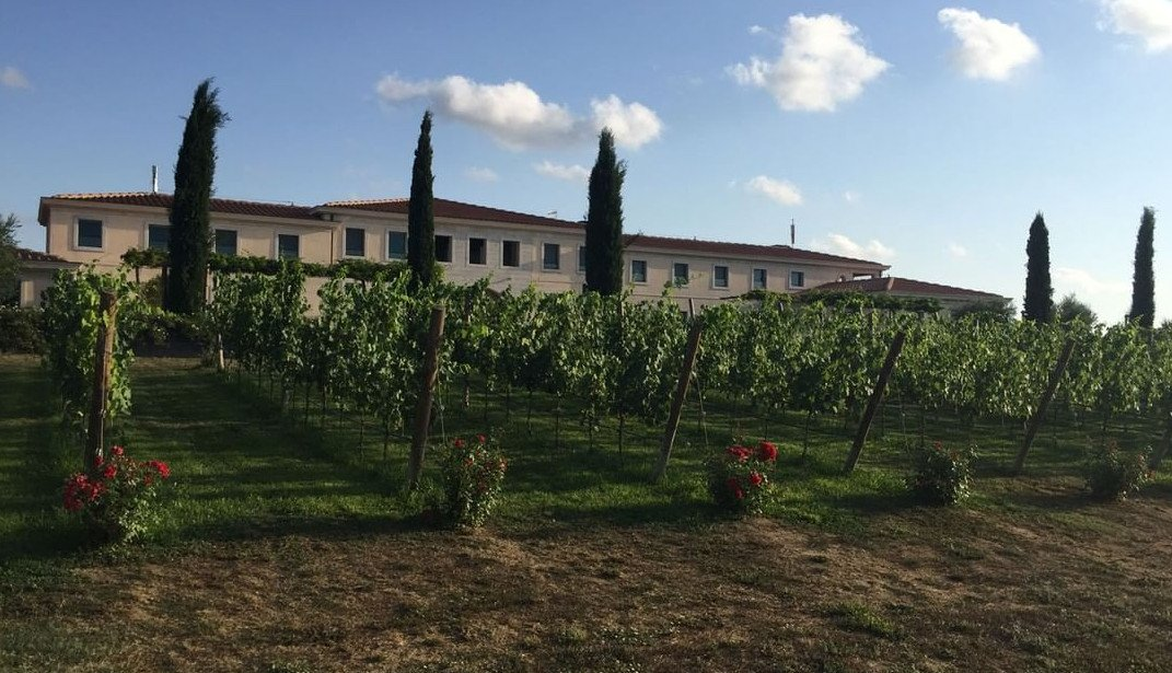 Wine Experience In Tuscany: Interview With Winemakers In Maremma